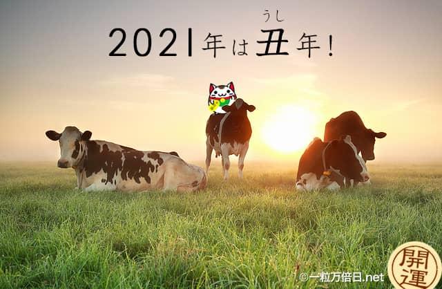 2021年の干支を象徴する牛と共に上る朝日 - 開運祈願 -